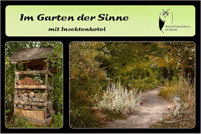 Im Garten der Sinne am Neckar