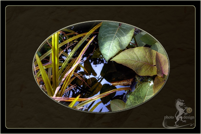 Garten Eden 12