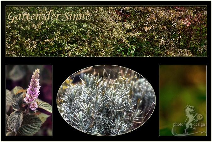 Garten Eden 7